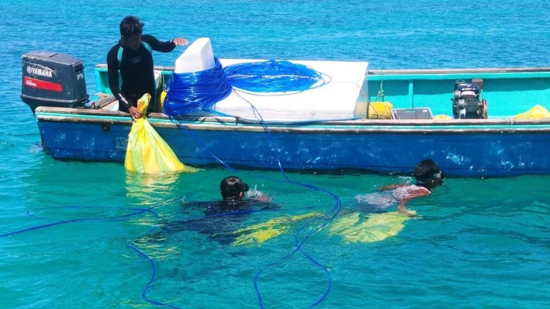 Proceso de retirada de residuos marinos. Foto: EFE