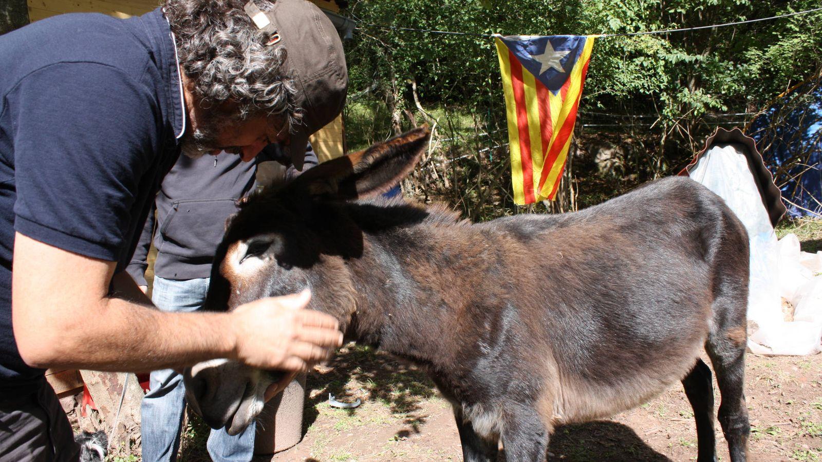 Foto:  Didac A. Costa acaricia a su burro Burruti. (A. V.)