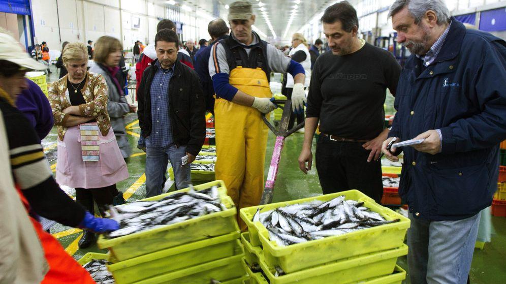 Foto: Vista de la lonja de Vigo con cajas de sardinas. (EFE)
