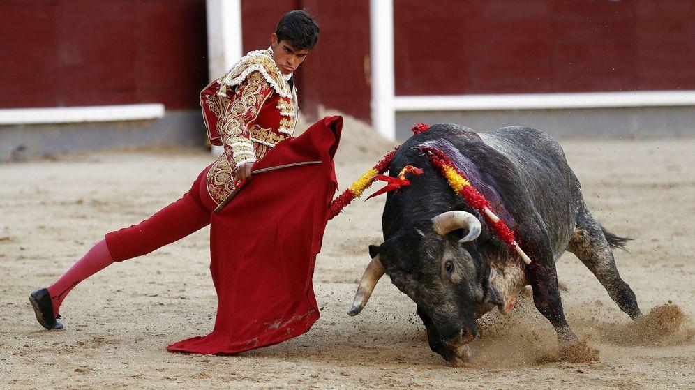 Foto: El novillero Francisco de Manuel, con su primero, de nombre Callejito, en la segunda novillada con picadores de la Feria de San Isidro. (EFE)
