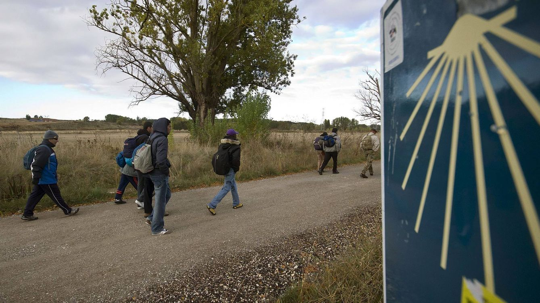 Foto: Peregrinos en el Camino de Santiago (EFE)