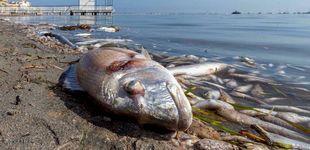 Post de 'Informe Semanal' se vuelca con la catástrofe del Mar Menor