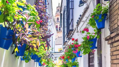 Descubre las 10 calles más bonitas de España