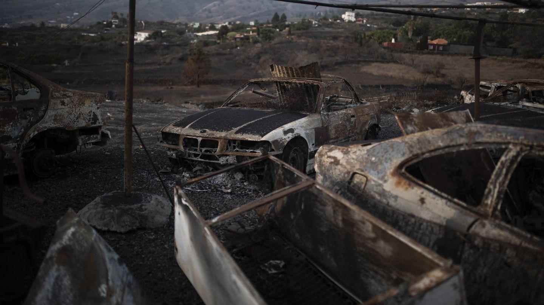 Restos del incendio que se produjo este verano en los municipios de El Paso y Los Llanos. (Alejandro Martínez Vélez)