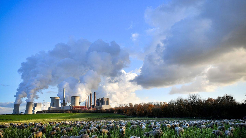 La planta de Neurath en Bergheim (Alemania)