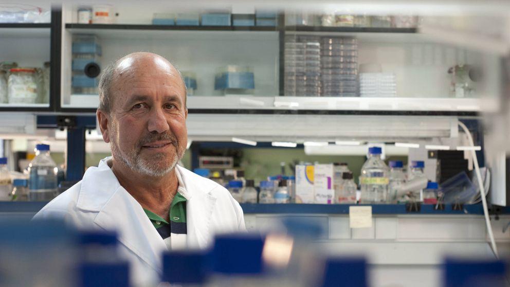 El virólogo tras una de las vacunas españolas más avanzadas: No debemos tirar la toalla