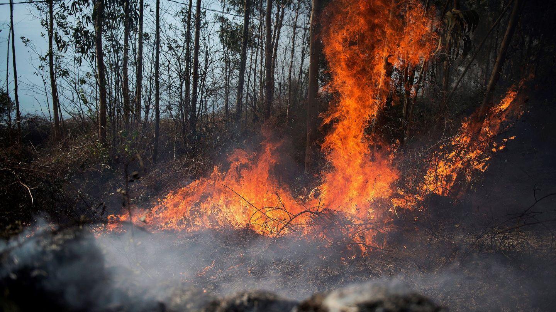 Llamas de un incendio en los montes próximos a la localidad cántabra de Ramales de la Victoria. (EFE)