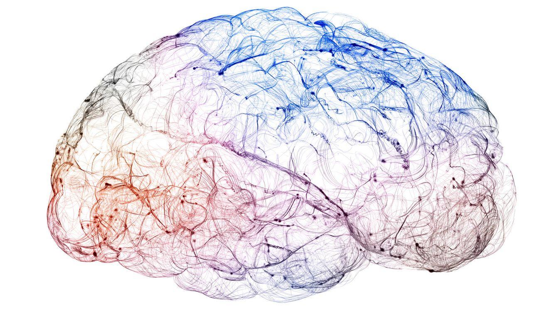 10 consejos para entrenar la memoria y fortalecerla a largo plazo