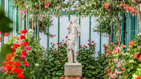 El invernadero real de Laeken abre sus puertas