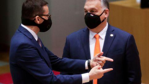 Esta es la 'joya' de Orbán para reemplazar al eurodiputado sancionado por una orgía gay