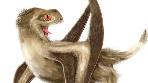 ¿Queda algún dinosaurio que no tenga plumas? Este polluelo se une a la lista