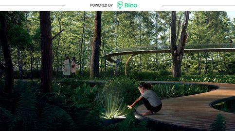 Jardines que guardan recuerdos: sus plantas reproducen audios de historias personales