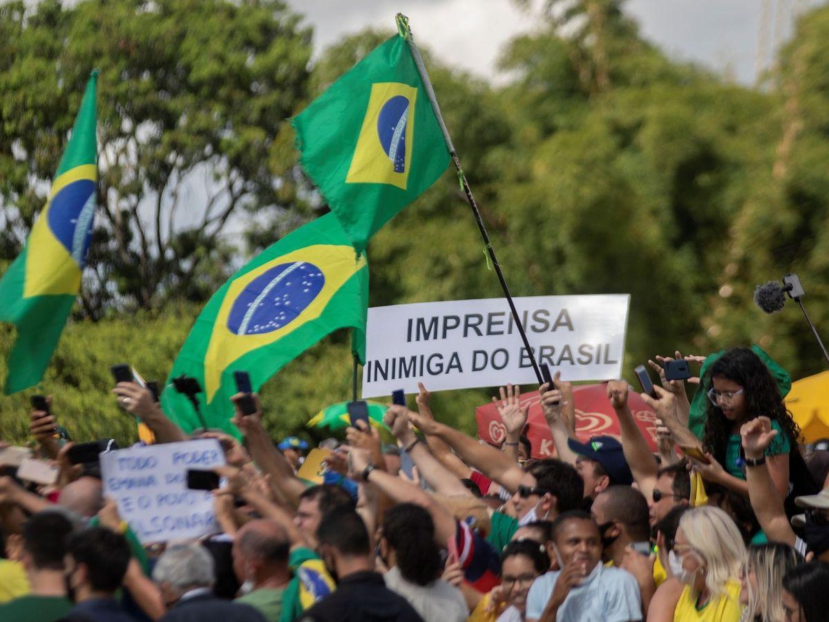 Virus del Zika: Dengue, gripe, sarampión y covid-19: la pandemia perfecta  que amenaza a Brasil