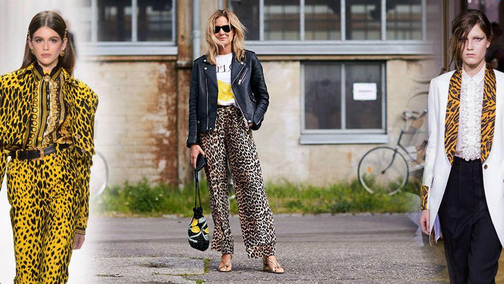 Leopardo: todas las formas de llevar el estampado animal con más glamour