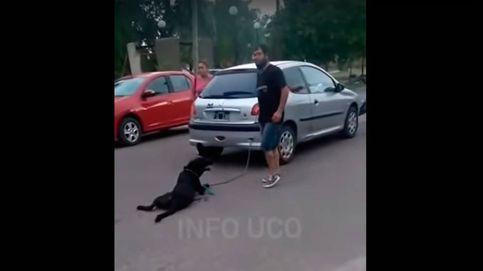 Una profesora, imputada por atar a su perro al coche y arrastrarlo 10 manzanas