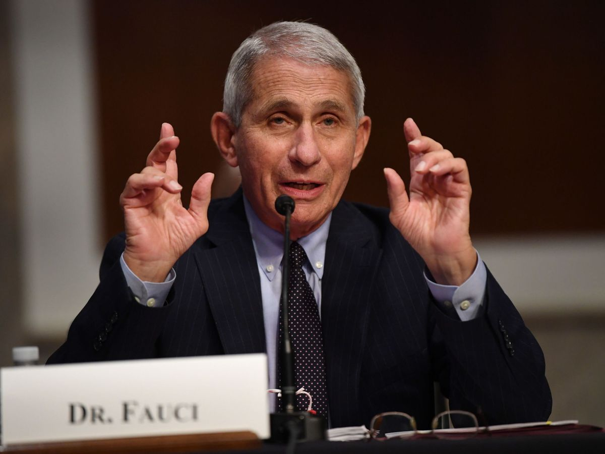 Foto: El doctor Anthony Fauci. (EFE)