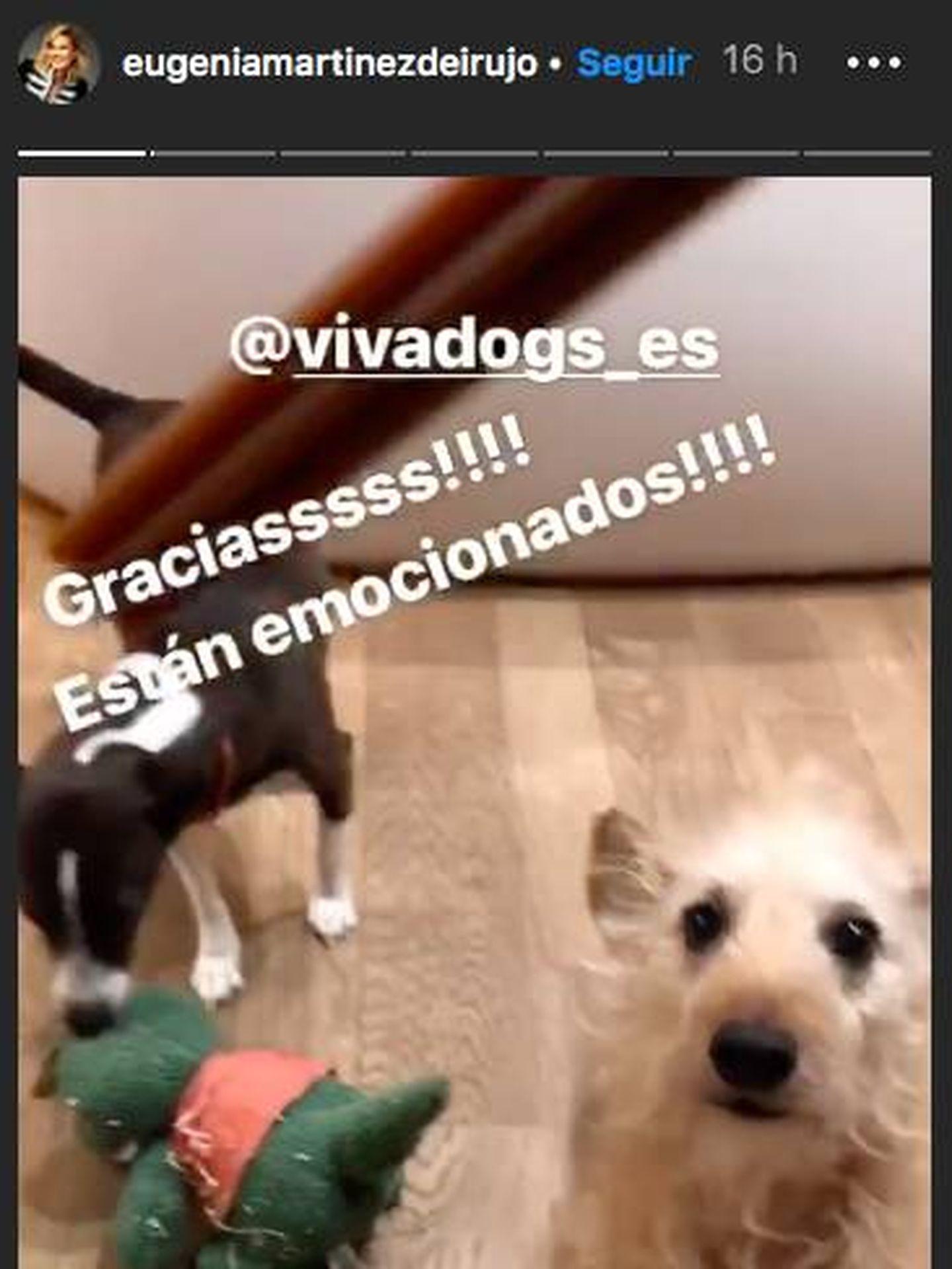 Instagram @EugeniaMartinezDeIrujo.