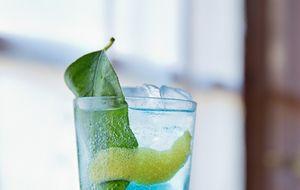 Gin-tonic: el manual definitivo