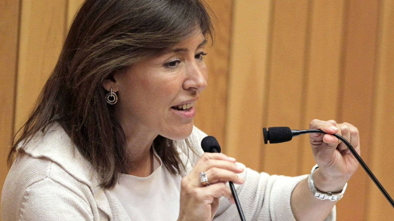 Greenalia ficha a José María Castellano (Inditex) y Beatriz Mato (PP) para el consejo