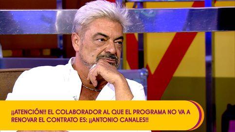 Ahora lo estoy pagando: Antonio Canales, víctima de la crueldad de 'Sálvame'