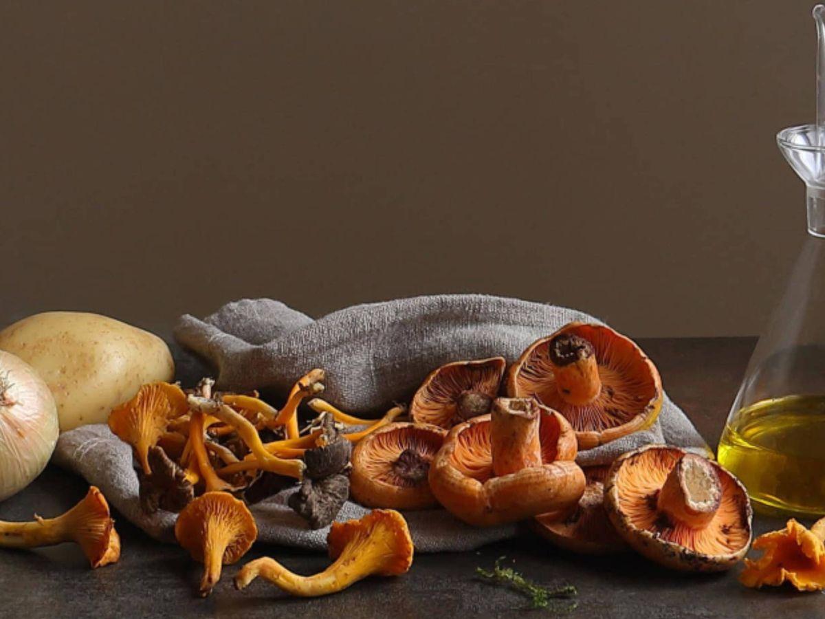 Foto: No solo decora tu mesa, Zara Home también te enseña deliciosas recetas de otoño. (Cortesía)