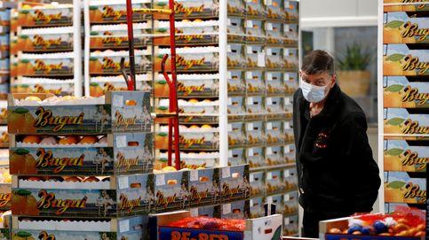 Al menos 26 mercados municipales reparten 1.800 kg de fruta a 20 hospitales de Madrid