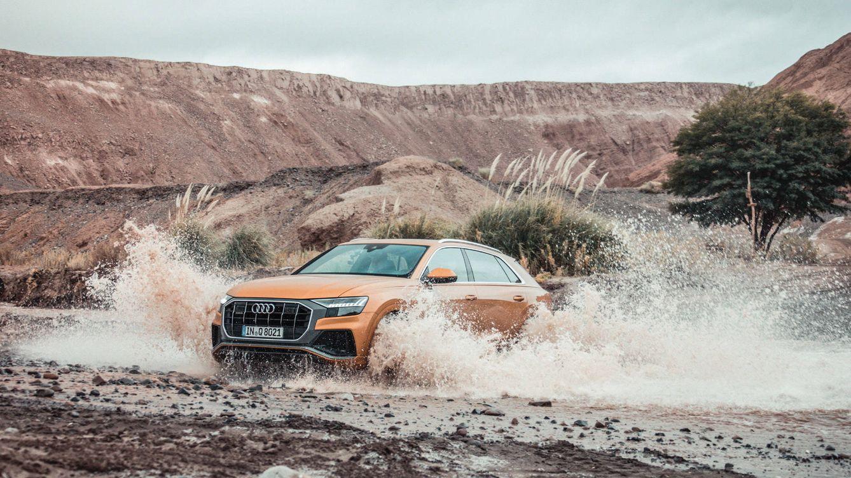 Foto: Audi Q8.