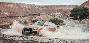 Post de Llega el nuevo Audi Q8: rasgos coupé y la polivalencia del SUV