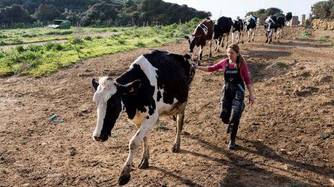 Greenpeace: la España rural es vital para enfrentar el cambio climático