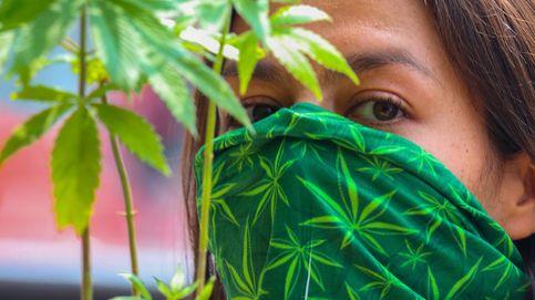 El Senado de México aprueba la legalización de la marihuana recreativa y medicinal