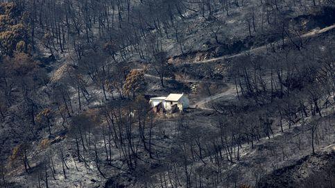 El megaincendio climático de Sierra Bermeja abre las puertas del infierno