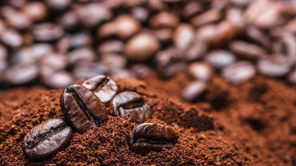 Del café al pescado: alimentos que el cambio climático hará más caros