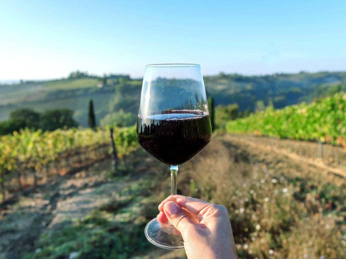 Foto: Una copa de vino en un viñedo. (iStock)