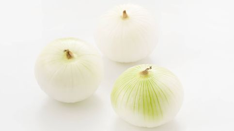 ¿Conoces todos los tipos de cebolla que existen?