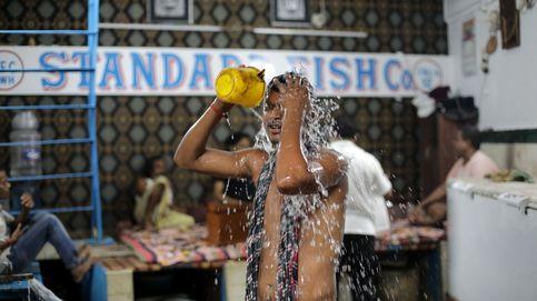 Aumento del precio del pescado en Calcuta