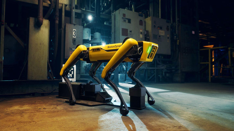 El robot Spot, en plena acción. (Reuters)