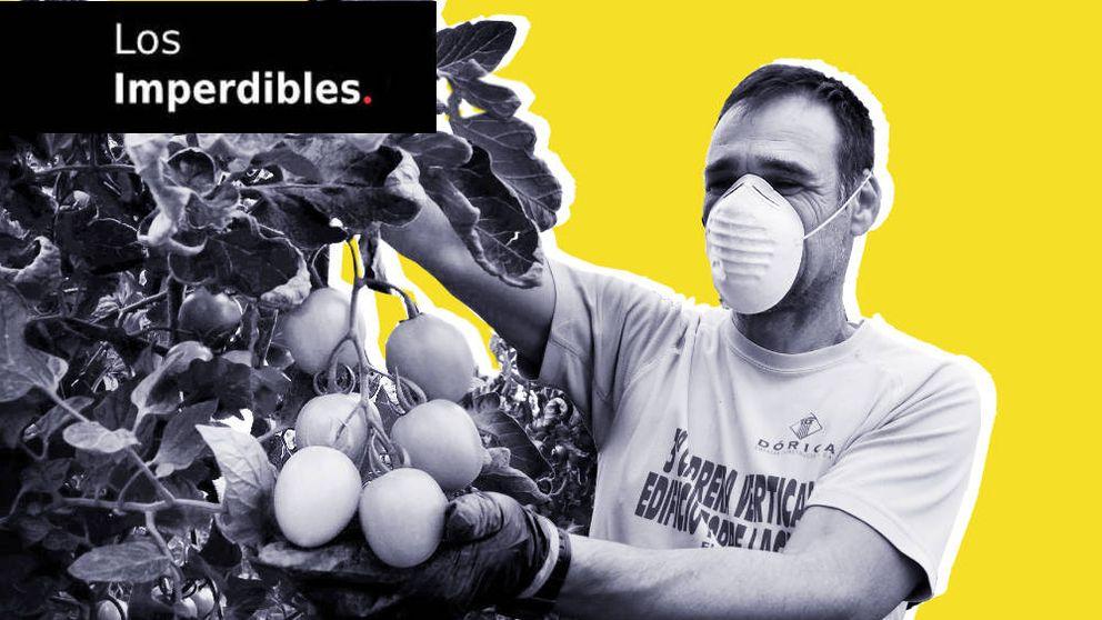 La falta de agricultores y el papel de los bancos centrales: historias de la semana