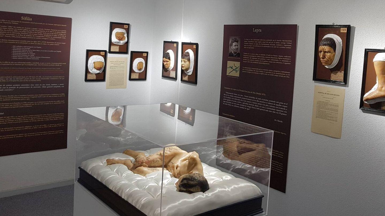 Otra de las salas del Museo Olavide. (Museo Olavide)