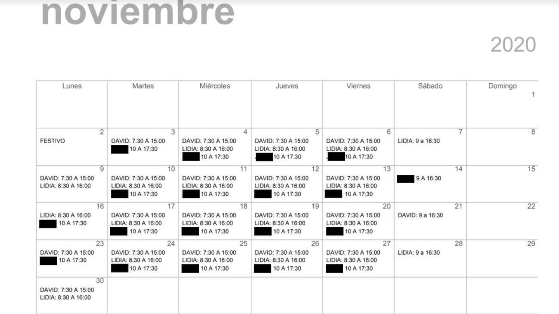 Captura de los horarios programados por la embajada, en los que se espera que Lidia y sus compañeros trabajaran al menos el sábado.