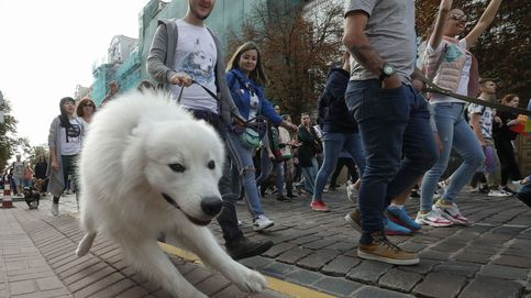 Una nueva ley australiana multará al que no saque a pasear a diario a su mascota