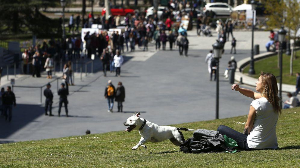 Foto: Una madrileña, con su mascota cerca del museo del Prado de Madrid.