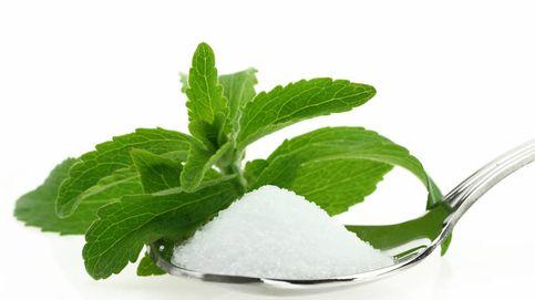 Edulcorantes en la dieta: una trampa para tu flora intestinal