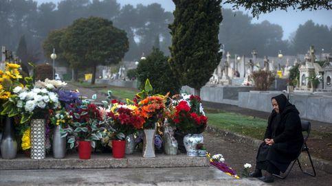 El sector de flor cortada confía en el Día de los Difuntos para resucitar