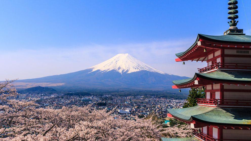 Japón vuelve a mirar al campo: revivir la agricultura para recuperar la felicidad