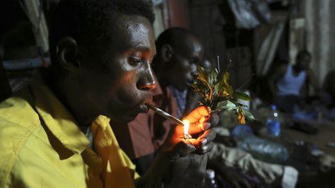 Masticando 'khat' en Etiopía: así son 'las hojas del paraíso' que ya han llegado a España