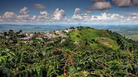 ¿Por qué Colombia es el paraíso del café?