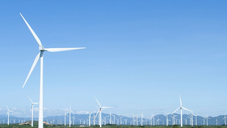 Imagen de archivo de un parque de energía eólica. (EFE)