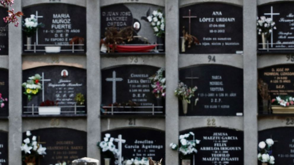 42.000 muertes por covid: un estudio eleva la mortalidad un 76% sobre la cifra oficial