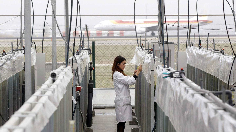 Sistema de captación de CO? en el Aeropuerto de Barajas. (EFE)