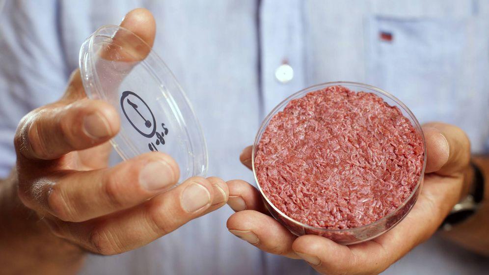 Foto: La primera hamburguesa de laboratorio, creada por Mark Post